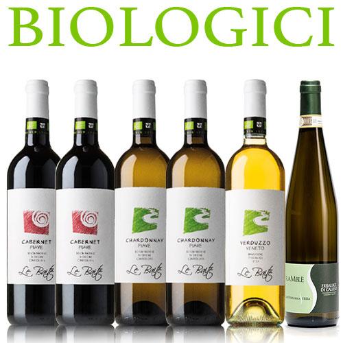 Offerta 6 vini biologici